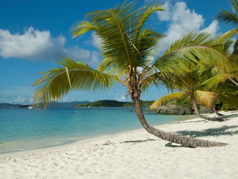 salomon-beach-st-john-us-virgin-islands